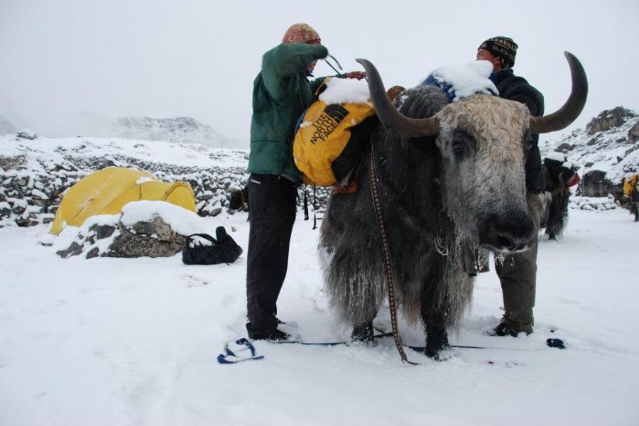Ombigaichen Peak Climbing (6340m)