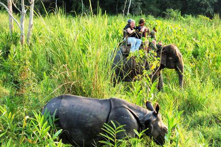 Koshi Tappu Reserve